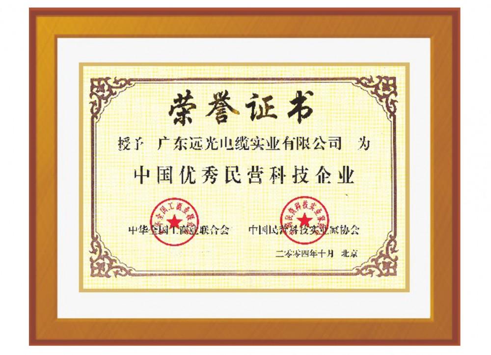 中国优秀民营科技企业