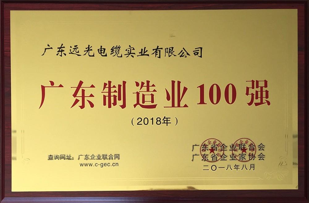 荣获2018年广东制造业100强