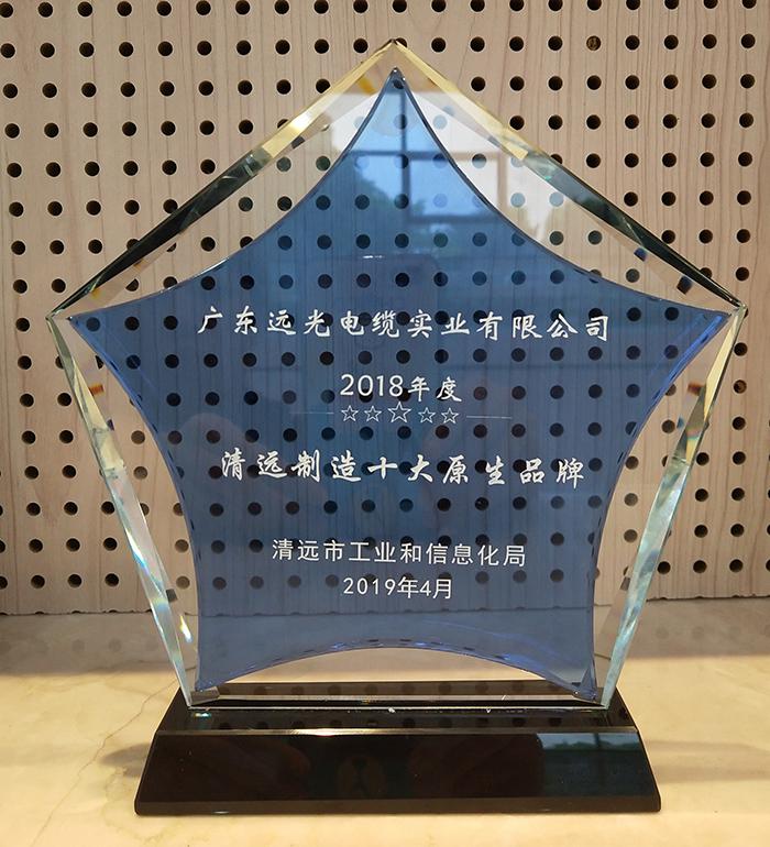 图3:2018年度首届清远制造十大原生品牌企业奖座.jpg